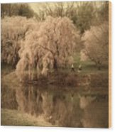 Through The Years - Holmdel Park Wood Print by Angie Tirado