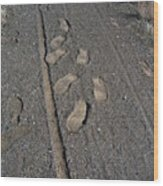 Tire Tracks And Foot Prints Wood Print by Heather Kirk