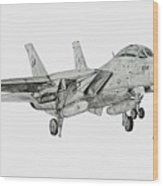 Tomcat Almost Home Wood Print by Nicholas Linehan