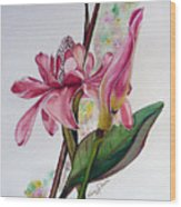 Torch Ginger  Lily Wood Print by Karin  Dawn Kelshall- Best