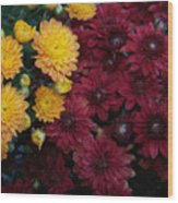 Touch Of Fall Wood Print by Evelyn Patrick