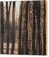 Trees Gathering Wood Print by Wim Lanclus