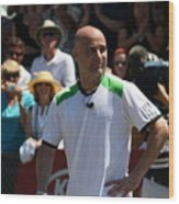 Tribute To Agassi Wood Print by Anne Babineau