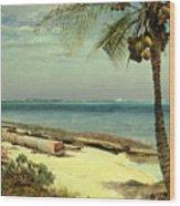 Tropical Coast Wood Print by Albert Bierstadt