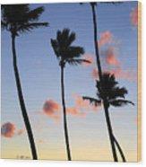 Tropical Sunrise Wood Print by Elena Elisseeva