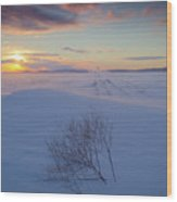 Tumble In The Snow Wood Print by Idaho Scenic Images Linda Lantzy