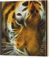 Turbulent Tiger Wood Print by Ricky Barnard