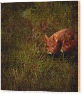 Two Piglets Wood Print by Angel  Tarantella