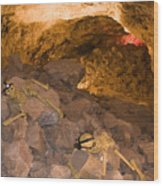 Two Skeletons Crawl Up A Rocky Hill Wood Print by Taylor S. Kennedy