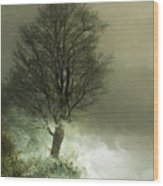 Upon The Windowsill Of Heaven Wood Print by Jan Piller