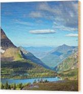 Valley Beyond Wood Print by Rebecca L. Latson