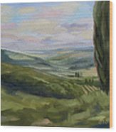 View From Sienna Wood Print by Jay Johnson