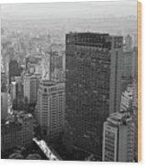View Of Sao Paulo Wood Print by Jacobo Zanella