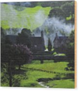 Village In North Wales Wood Print by Harry Robertson
