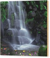 Waterfall Wood Print by Carlos Caetano