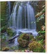 Waterfall Wood Print by Patti Sullivan Schmidt