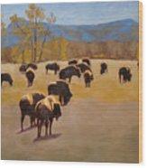 Where The Buffalo Roam Wood Print by Tate Hamilton