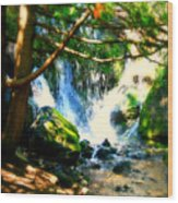 White Falls Wood Print by Perry Webster