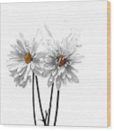 White On White Wood Print by Regina Arnold