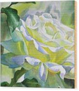 White Rose With Yellow Glow Wood Print by Sharon Freeman
