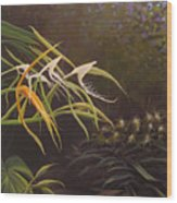 Wild Orchids Wood Print by Hunter Jay