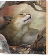Wildcat Sunrise Wood Print by Carol Cavalaris