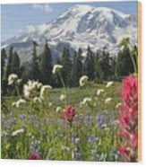 Wildflowers In Mount Rainier National Wood Print by Dan Sherwood
