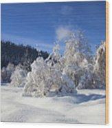 Winter Blanket Wood Print by Mike  Dawson