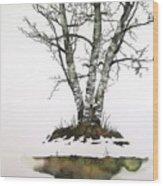 Winters Birch Wood Print by Carolyn Doe