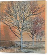 Winter's Dawn Wood Print by Shawna Rowe