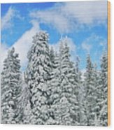 Winterscape Wood Print by Jeff Kolker