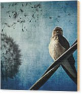 Wishing Swallow Wood Print by Nancy  Coelho