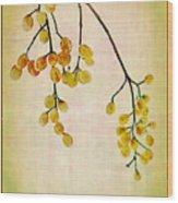 Yellow Berries Wood Print by Judi Bagwell
