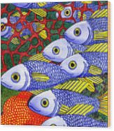 Yellow Fins Wood Print by Catherine G McElroy