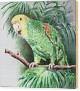 Yellow-headed Amazon Parrot Wood Print by Arline Wagner