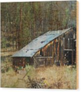Yesteryear Shed 2 Wood Print by Dale Stillman