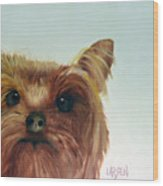 Yorkshire Terrier Wood Print by Dick Larsen