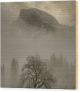 Yosemite In The Winter Wood Print by Connie Cooper-Edwards