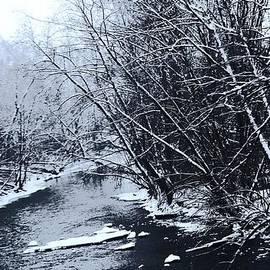 R A W M   -          Lake Fork River