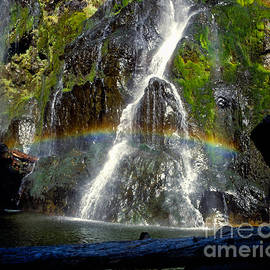 Henline Falls Rainbow by Tracy Knauer