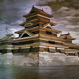 Andrzej Szczerski -  Matsumoto Castle