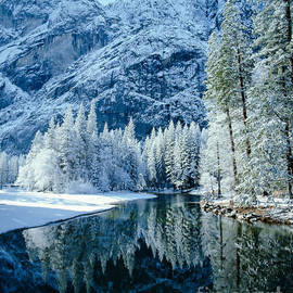 Tracy Knauer -  Merced River Reflection 2