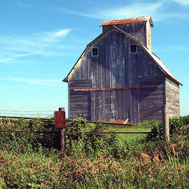 Tom Druin -  On The Farm