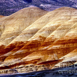 Painted Hills 6 by Tracy Knauer
