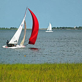 Suzanne Gaff - A Perfect Day for Sailing