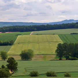 A View over Fields by Jouko Lehto