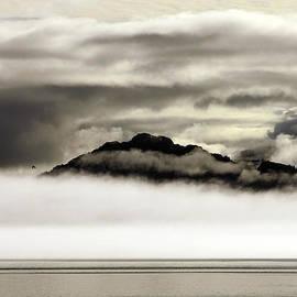 Alaska by Ramunas Bruzas