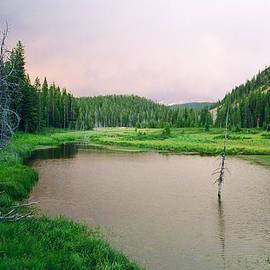 Adam Dowling - Along the Trail