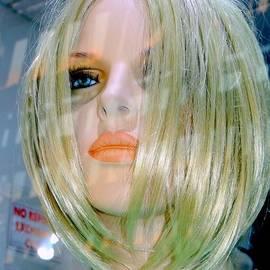 Beauty Revealed by Ed Weidman