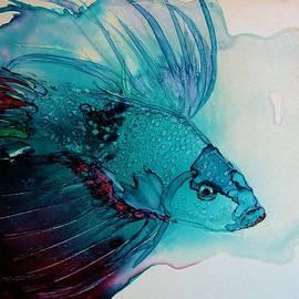Betta Dragon Fish by Marcia Breznay
